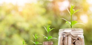 Certyfikat ekologiczny – jakie daje korzyści